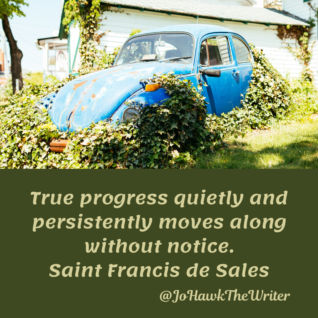 True progress quietly and persistently moves along without notice. Saint Francis de Sales