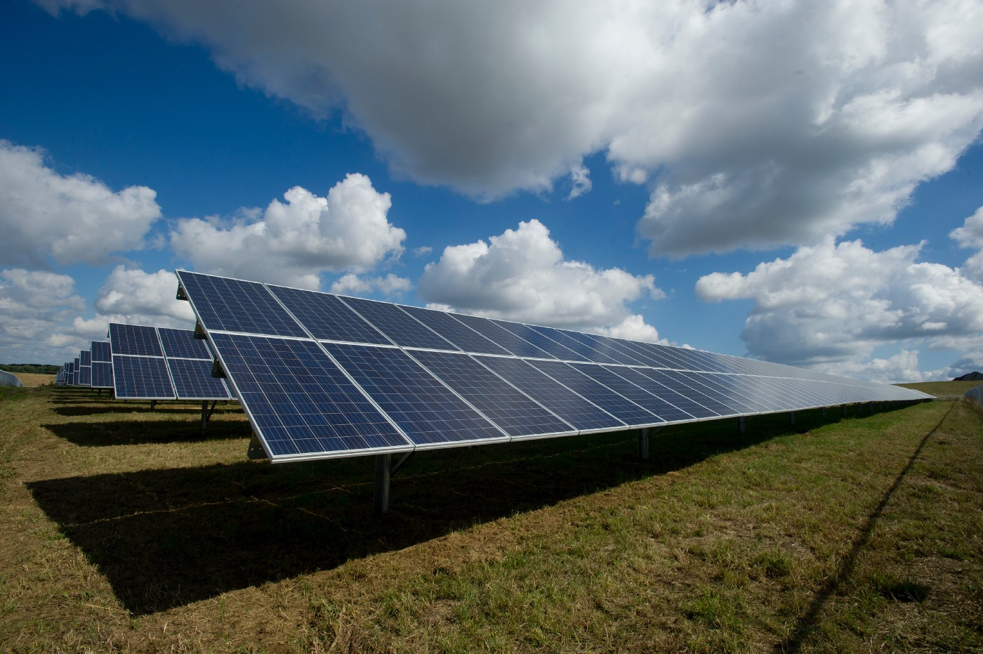Rows of solar panels in a grassy field. The sky is light blue and dotted with white clouds.