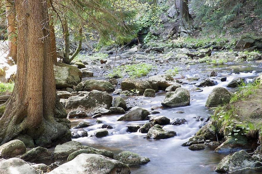 A babbling brook—free flowing with some white-water