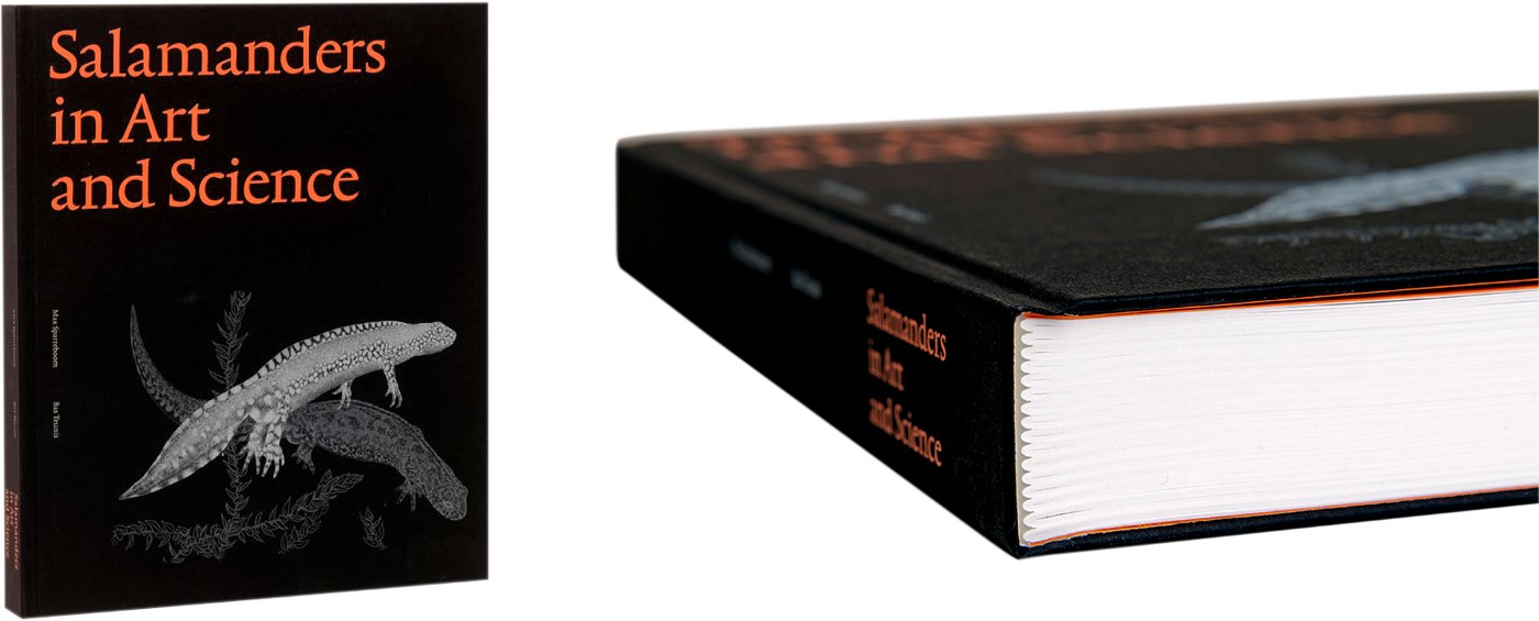 Photo on the left of book cover (black paper with title in large orange text), on the right a photo of the binding zoomed-in