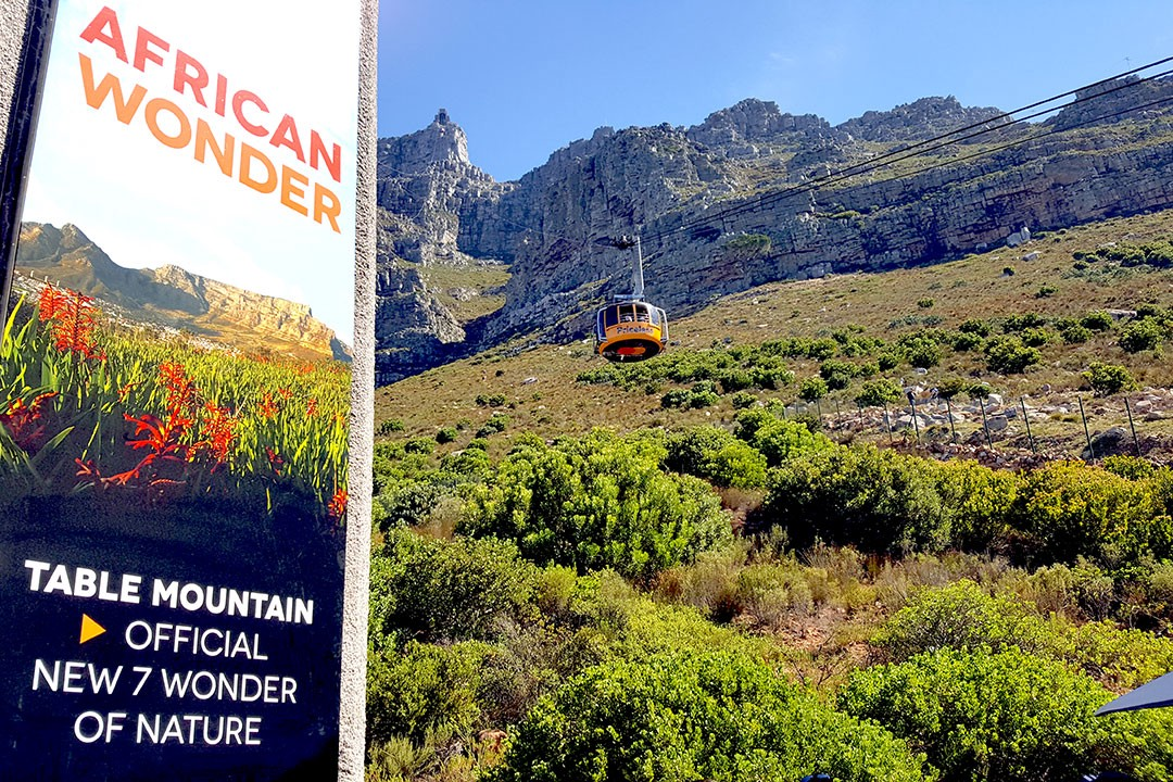 A view of the Table Mountain Aerial Cableway from the base station.