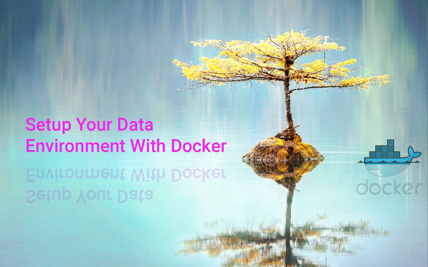 Hands on Setup Your Data Science Environment With Docker   by flo ...