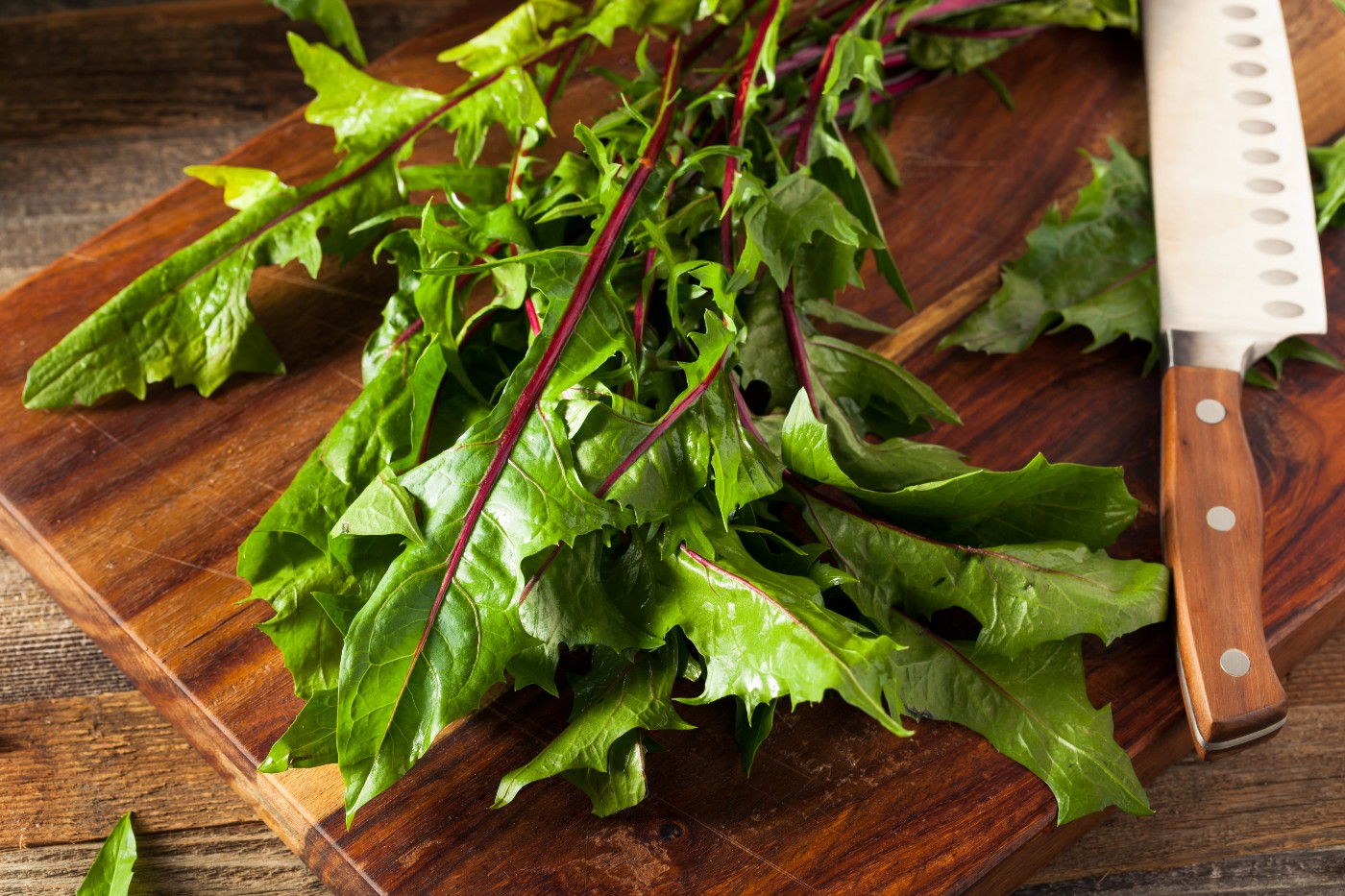 Dandelion greens with dark red spines on a wooden cutting board
