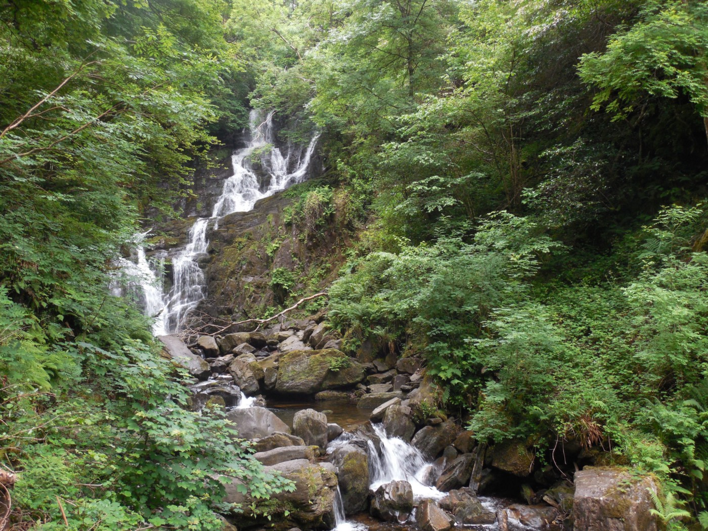 Torc Waterfall, a streaming cascade surrounded by greenery, in Killarney National Park, Ireland