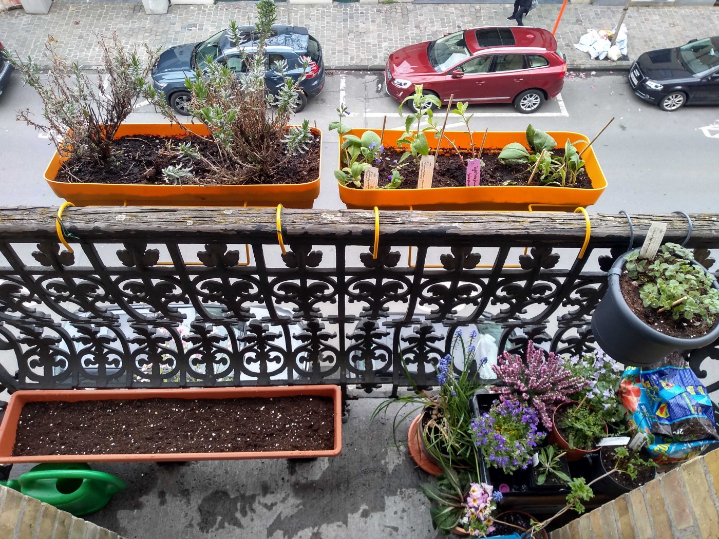 Pollinator balcony or pollinator garden with insect hotel in city apartment for bees, butterflies, and other pollinators