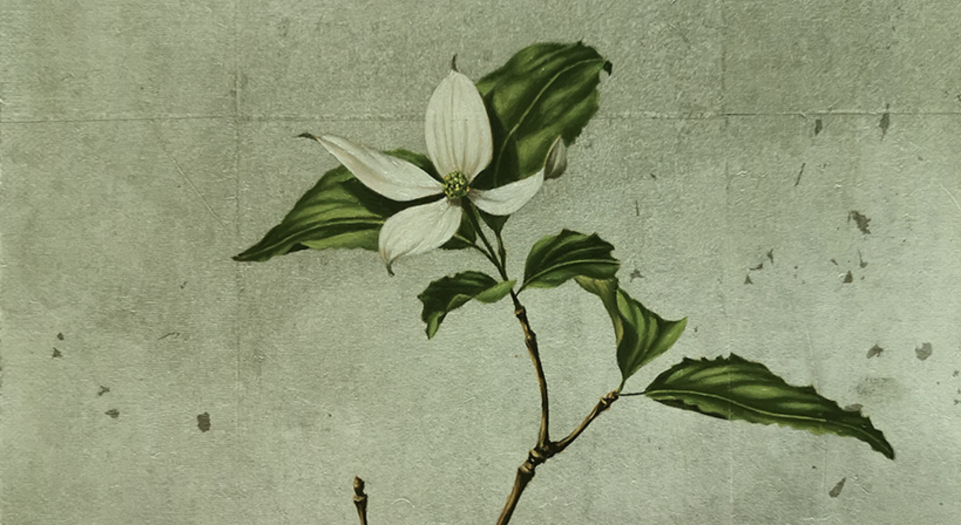 Japanese Dogwood oil painting by Mae Hisanori