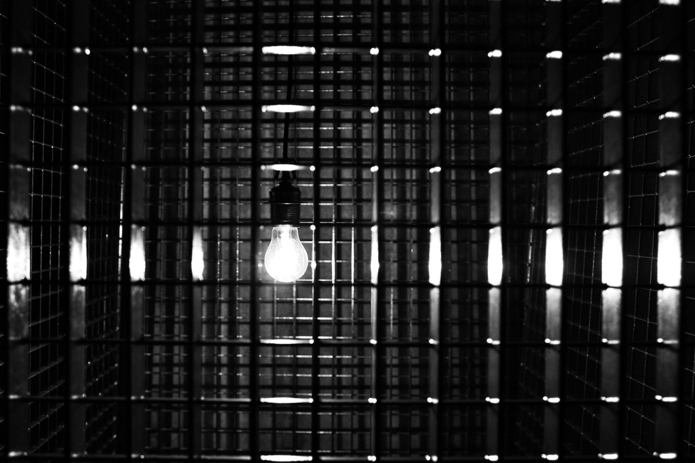 A black and white photo of a light bulb in a cell.