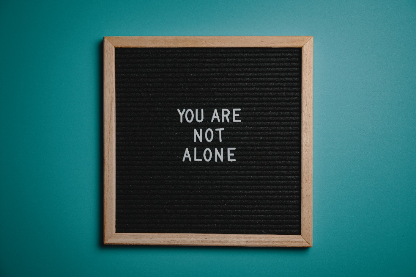 """small black chalkboard with """"you are not alone"""" in white letters."""