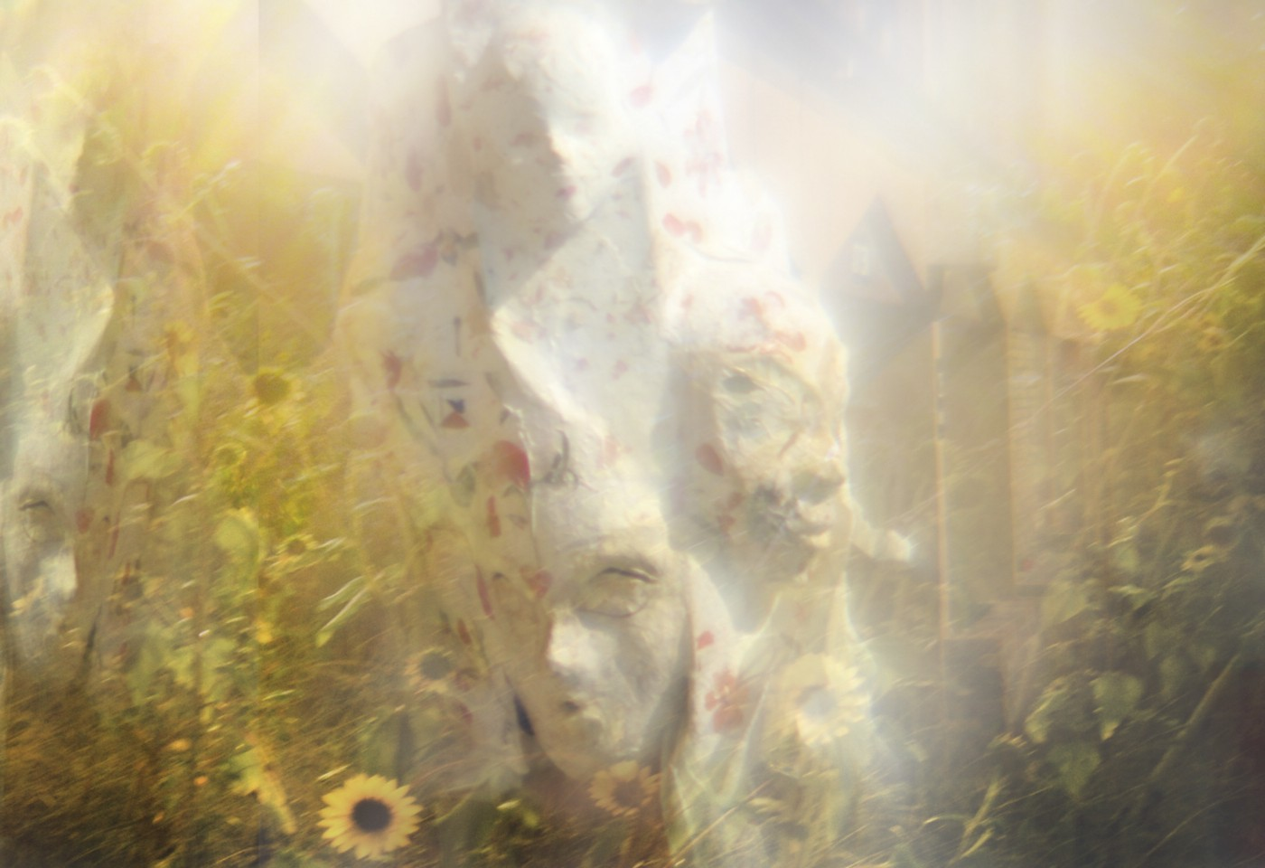 Mixed media image combining a photo of yellow flowers in a field and a photo of a multi-faced mask.