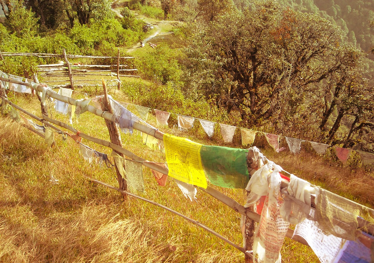 A path in Nepal lined with worn prayer flags