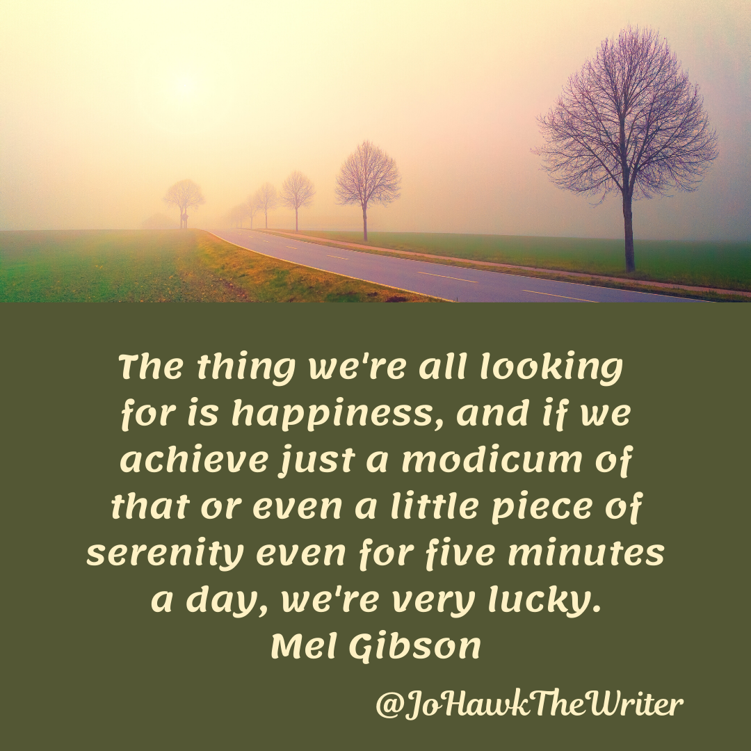 The thing we're all looking for is happiness, and if we achieve just a modicum of that or even a little piece of serenity even for five minutes a day, we're very lucky. Mel Gibson