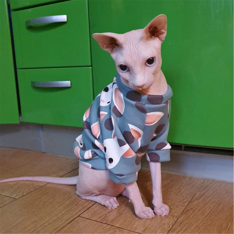 cats, cat clothes, sphynx, sphynx clothes, OvLGroup Online Store