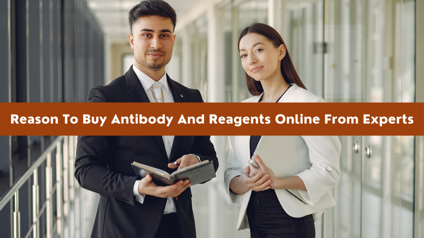 Reason To Buy Antibody And Reagents Online From Experts