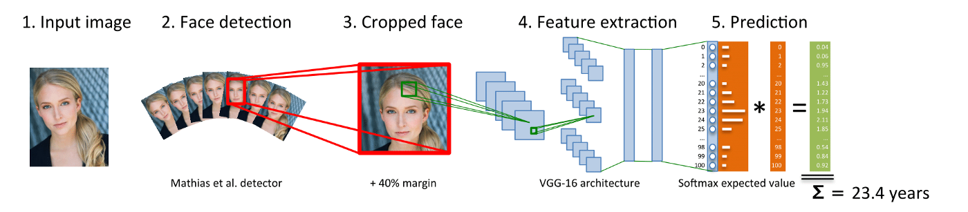 Building a Face Attributes Model Using Multi-Task Learning