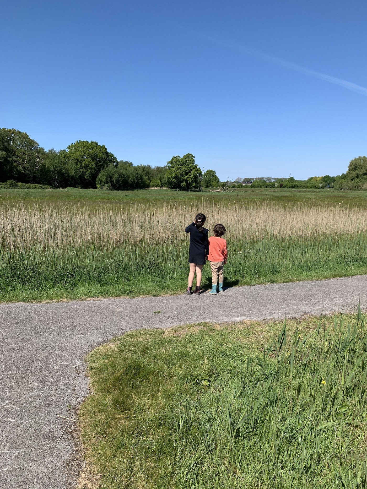 Two children looking out over a green field with some trees in the background.