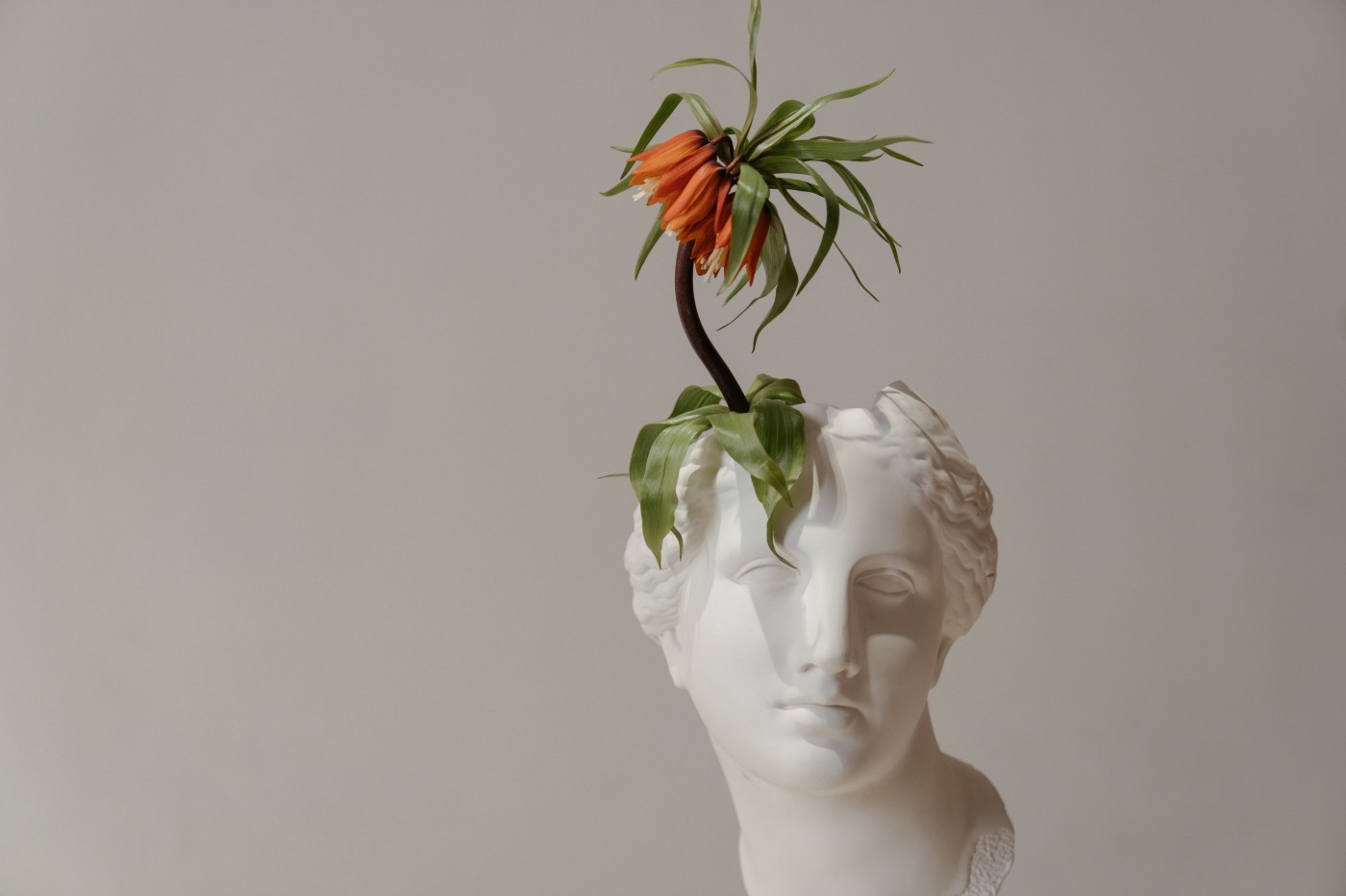 White ceramic bust with an orange flower emerging from the top of the head