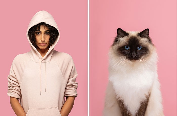 A siamese cat with a perfect pose is arranged next to a woman in a pink hoodie with a similarly framed photo