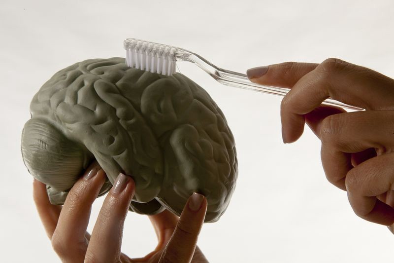 Brain being cleaned with a tooth brush.