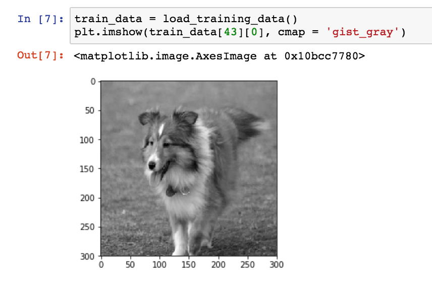 Image Classification Keras Tutorial: Kaggle Dog Breed Challenge