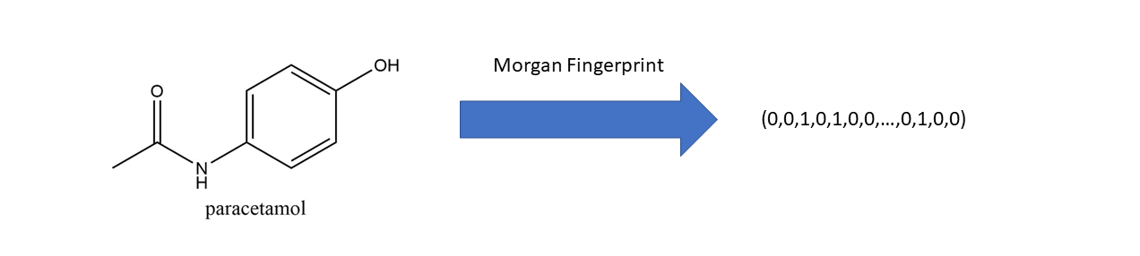 A Practical Introduction to the Use of Molecular Fingerprints in