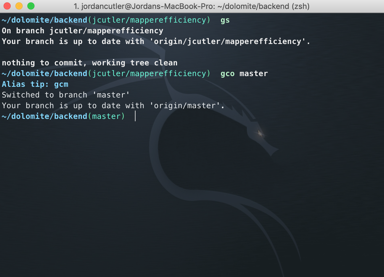 Supercharge Your Productivity With iTerm2 & zsh - Dolomite - Medium