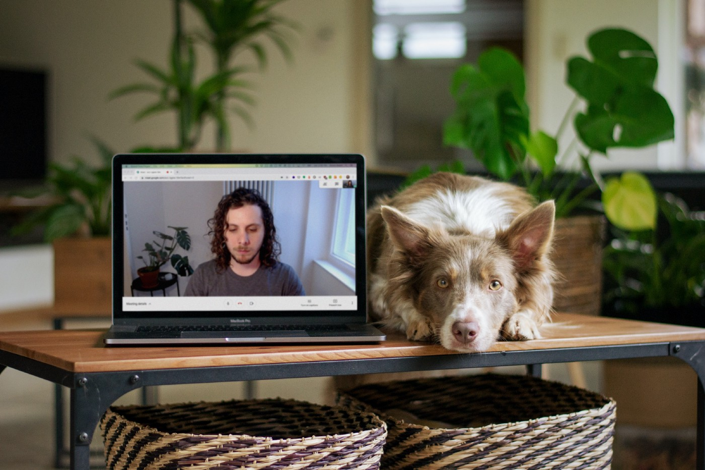 A photo of a Macbook with the author in a Google Meet call on the screen. Macbook is next to a dog on the table.