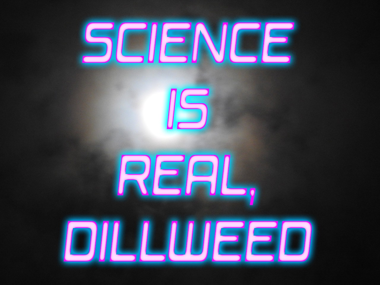 """""""Science is Real, Dillweed"""" Neon Sign against foggy night"""