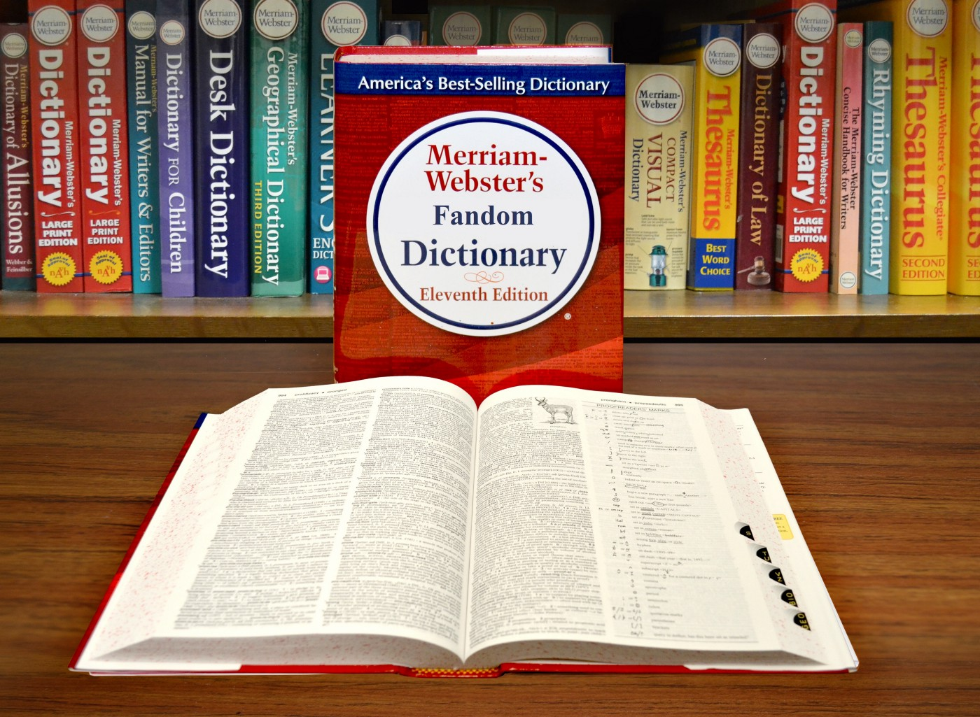 """Two dictionaries, one standing that reads """"Merriam-Webster's Fandom Dictionary"""", one lying open and flat in front of it."""