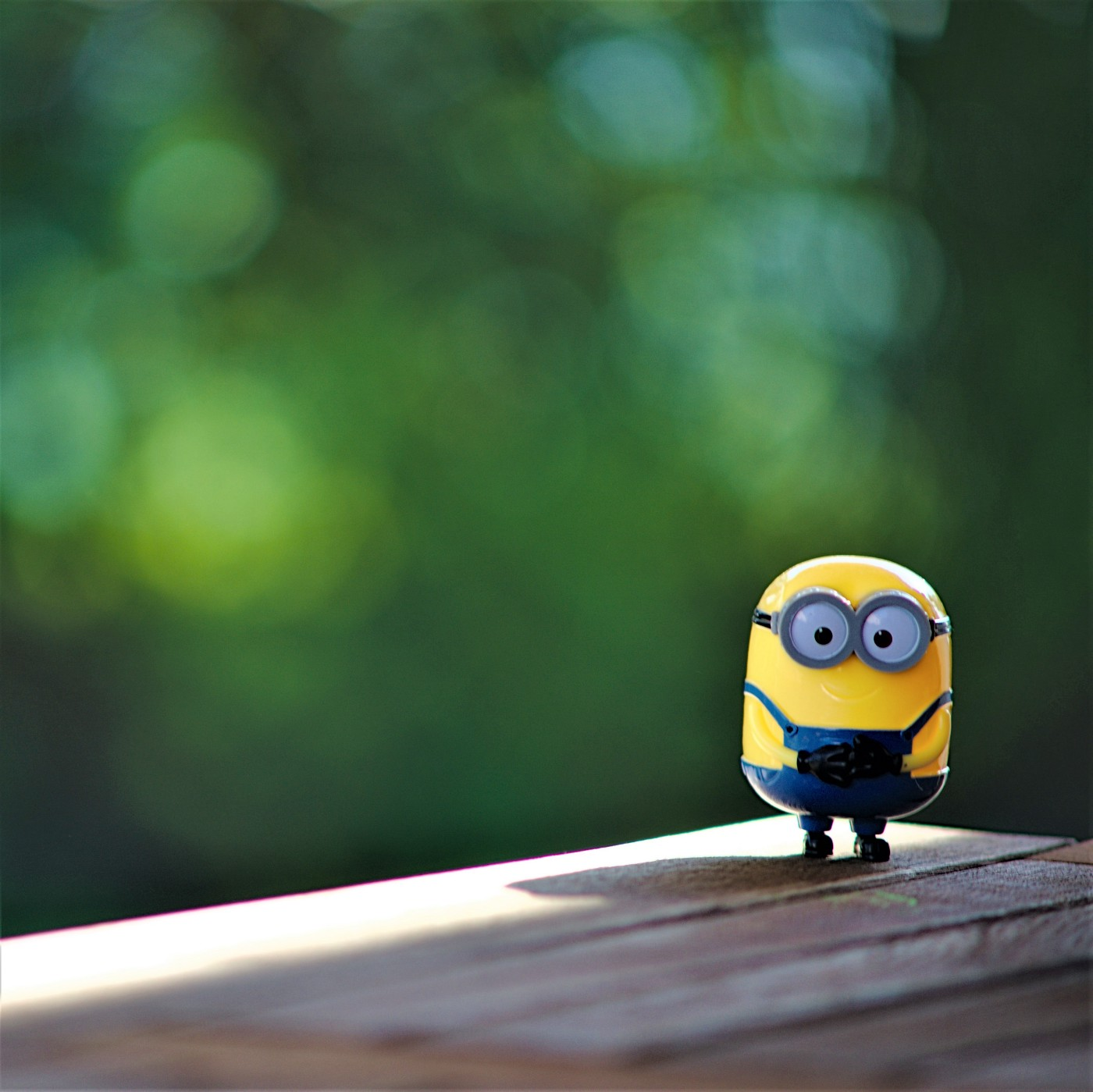 Dispicable Me Minion