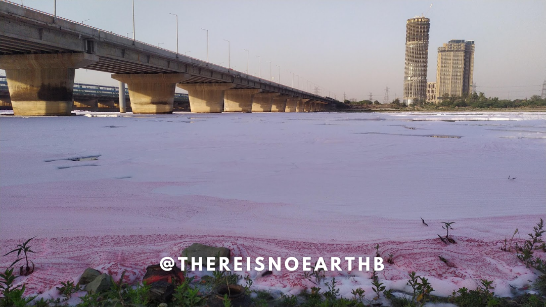 Yamuna river is covered with white-ish pink froth with two tall buildings standing on the other end of the river