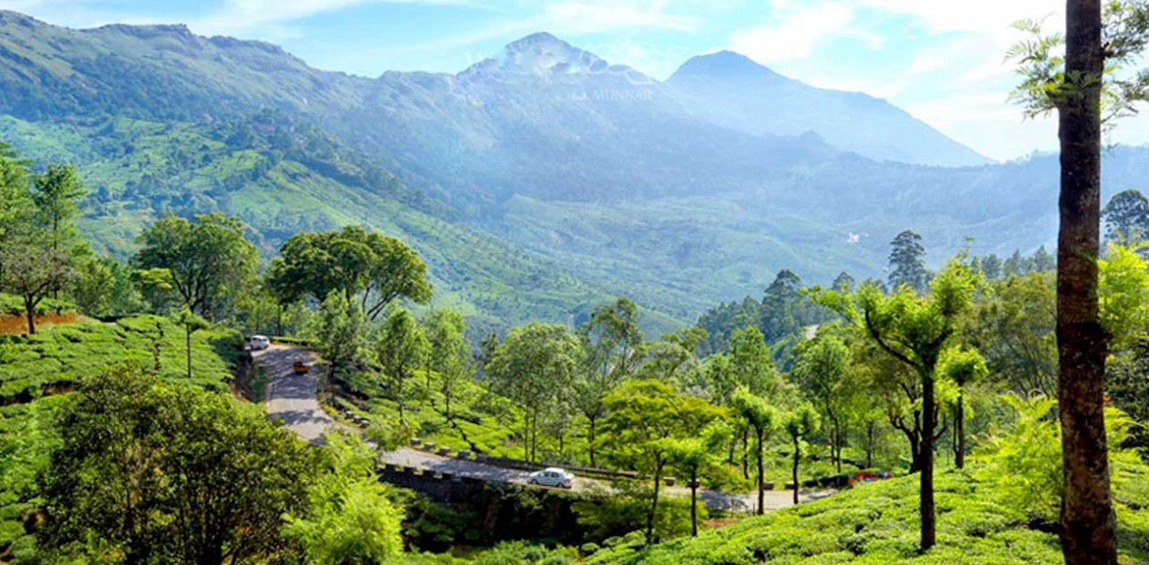 cheapest honeymoon packages to kerala