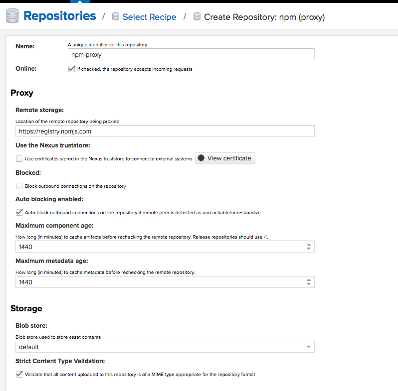 Establishing Organizational npm Repository Over Nexus