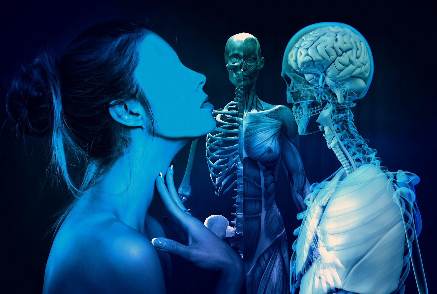 3D Images of a woman's exterior profile, skeletal frame and organs