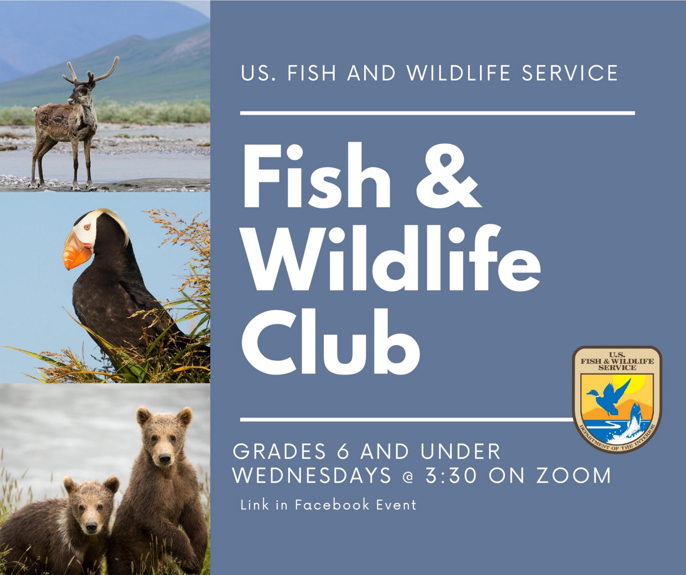 Poster with images of caribou, tufted puffin, and brown bear cubs, with text advertising the Fish and Wildlife Club program.