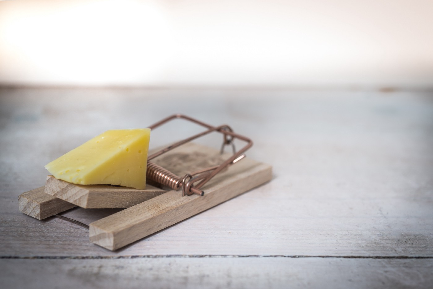 A mouse trap sits at the ready, with an enticing chunk of cheese.