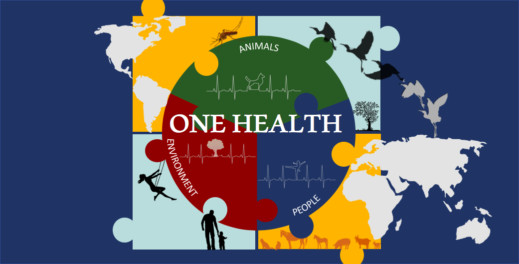 United in One Health (featured image).