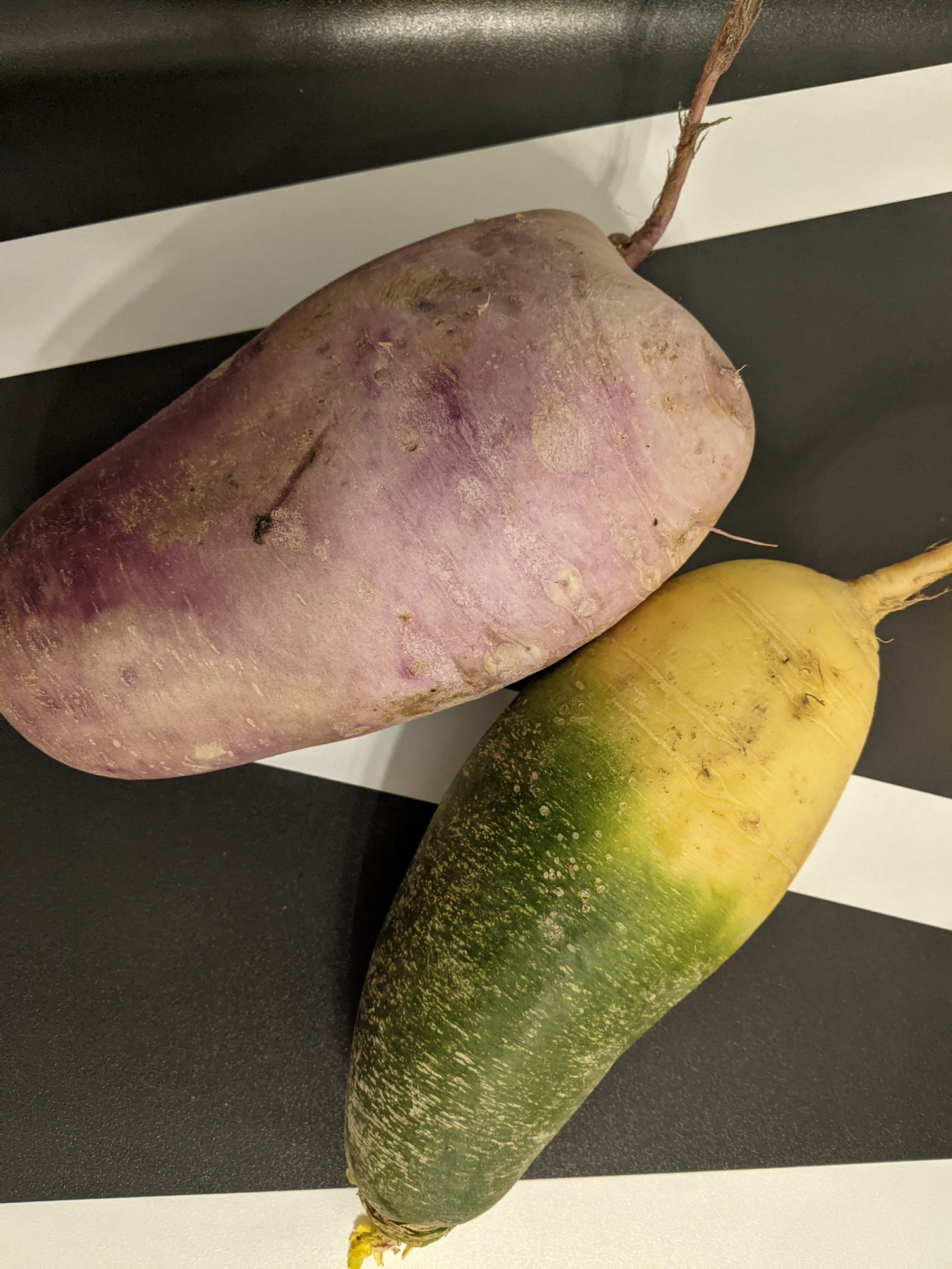 green and purple daikon radish