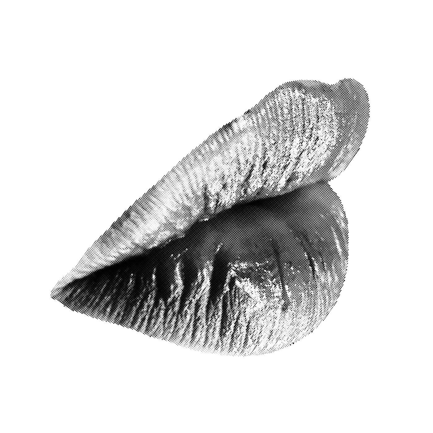 Black and white image of a woman's lips.