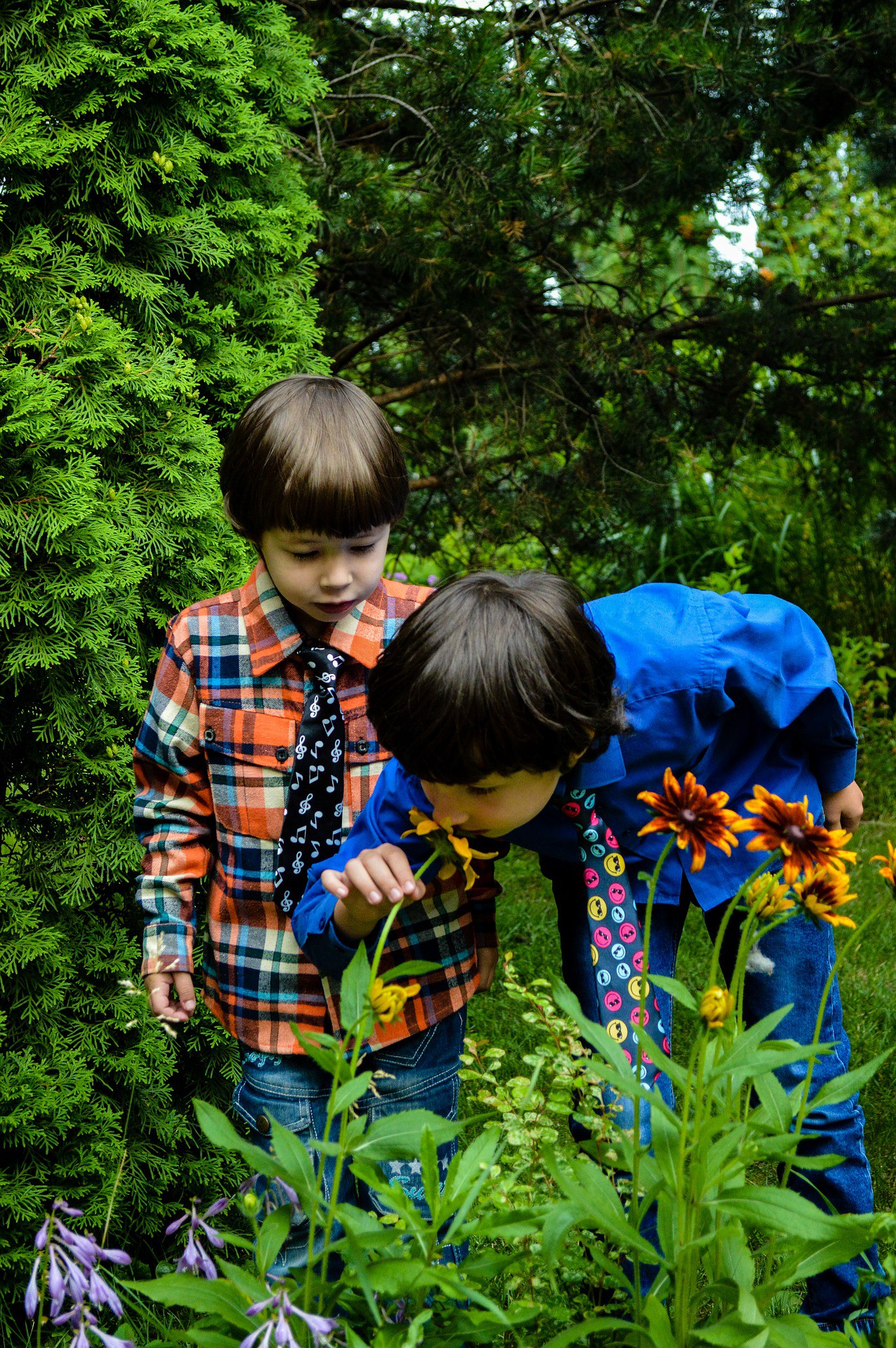 Two boys in button-down shirts are in the forest, and one is smelling a cone flower in bloom.
