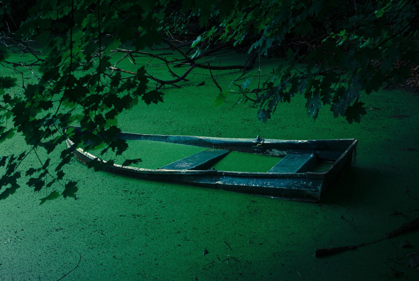 mostly sunken row boat in an algae-covered pond.