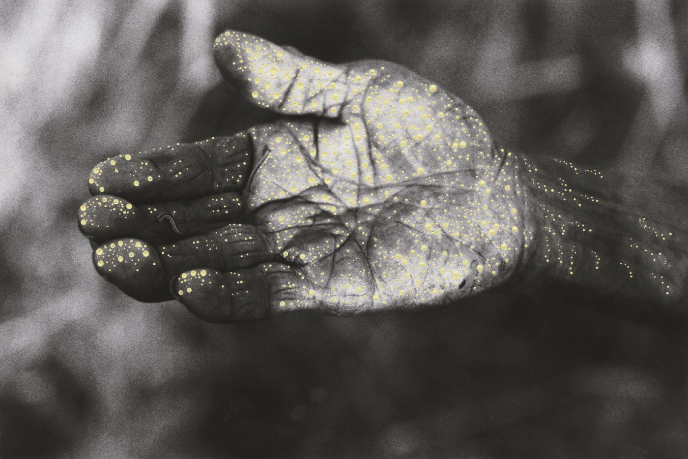 Close-up of an older indigenous woman's hand is held out, palm uppermost. The photographed hand has been painted over with patterns of tiny white and yellow dots.