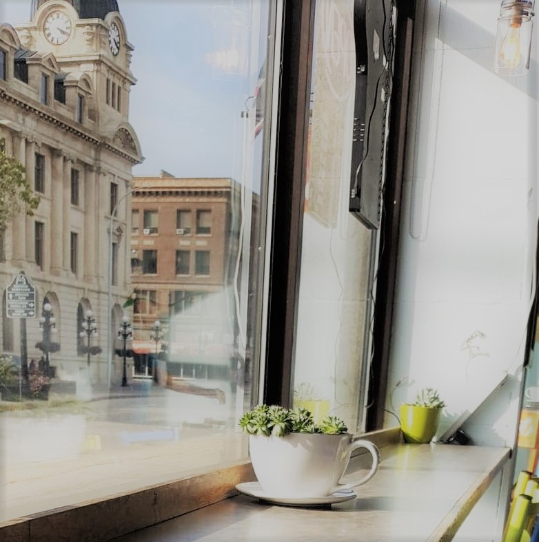 A large window at a coffee shop. Inside is a countertop with a large white mug containing a succulent plant and a yellow ceramic flower pot with a succulent. Outside is a street with tall historic buildings, black lamp posts with round lights, and flowers planted in large barrels.