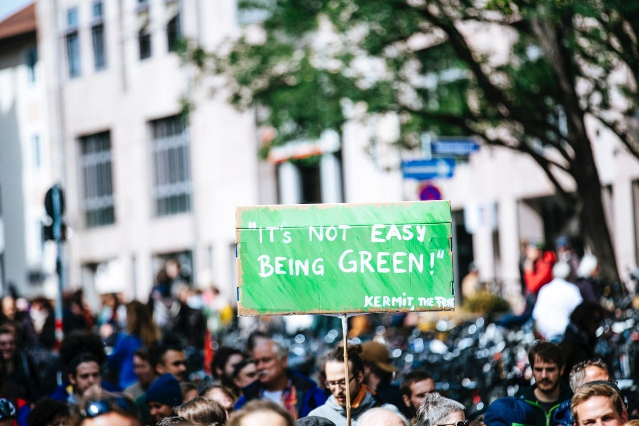 """Activist with green climate protest sign which reads, """"It's Not Easy Being Green!""""—Kermit the Frog"""