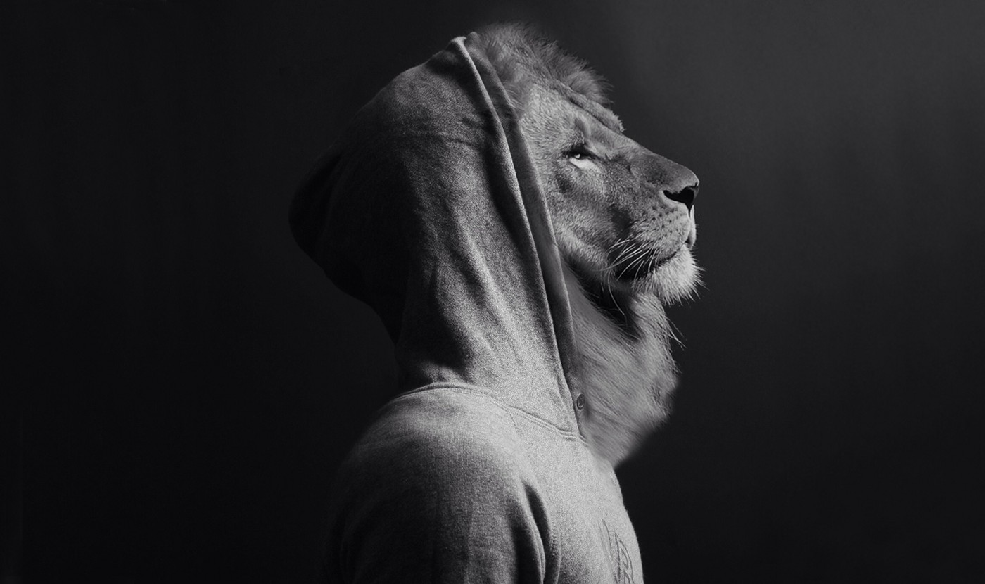 Person in a hoodie with a lion's face.