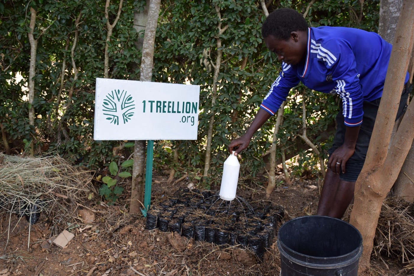 1treellion's planting in Kenya / Photo taken by Kenya Connects