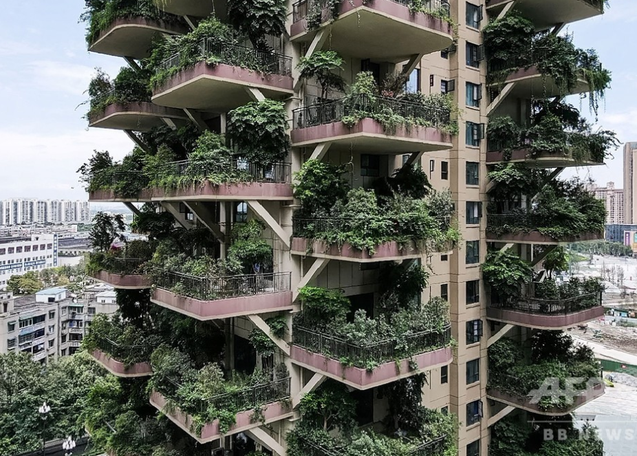 A building where the balconies are filled with various types of plants.