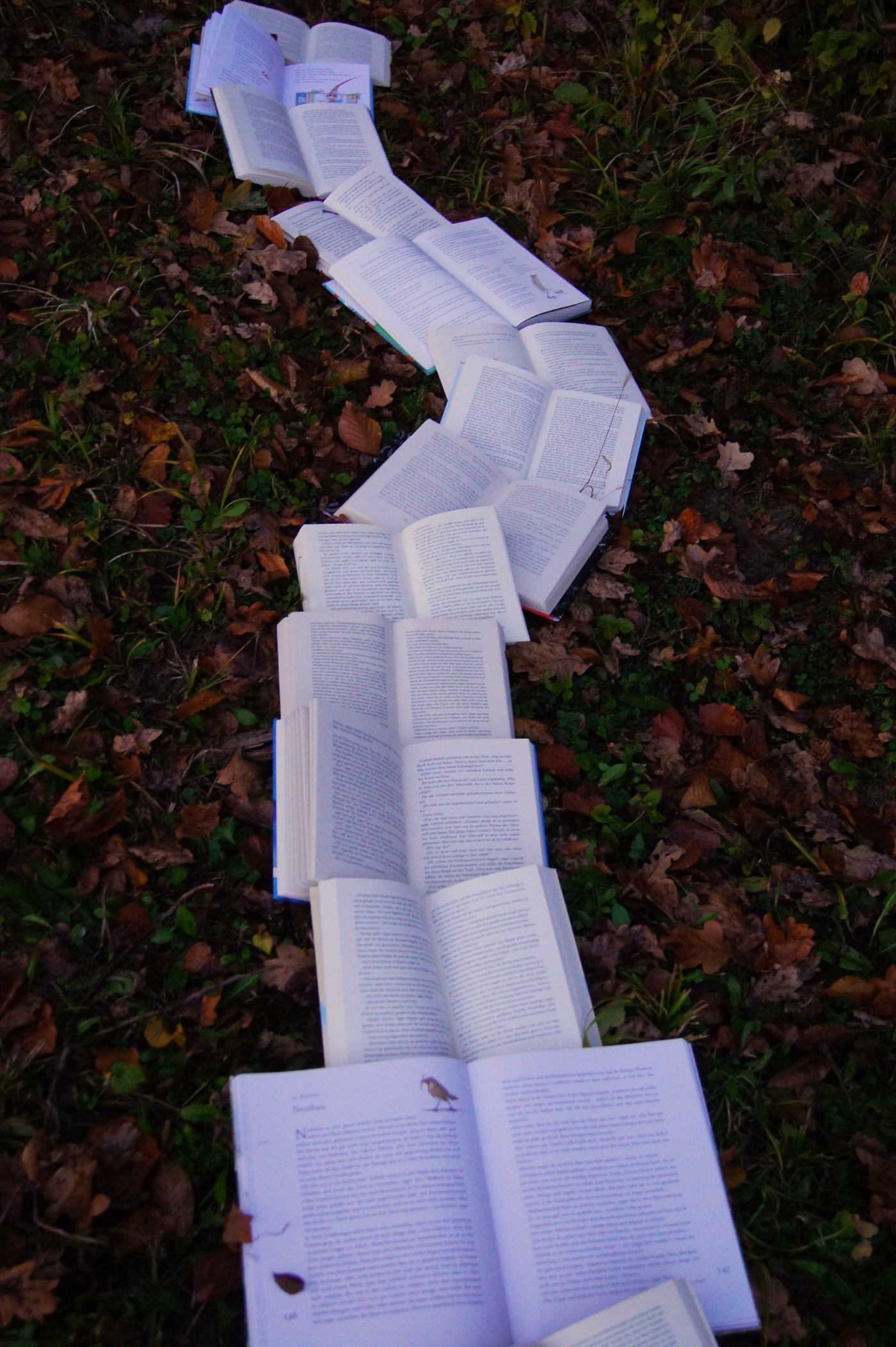 a path of open books on leaves