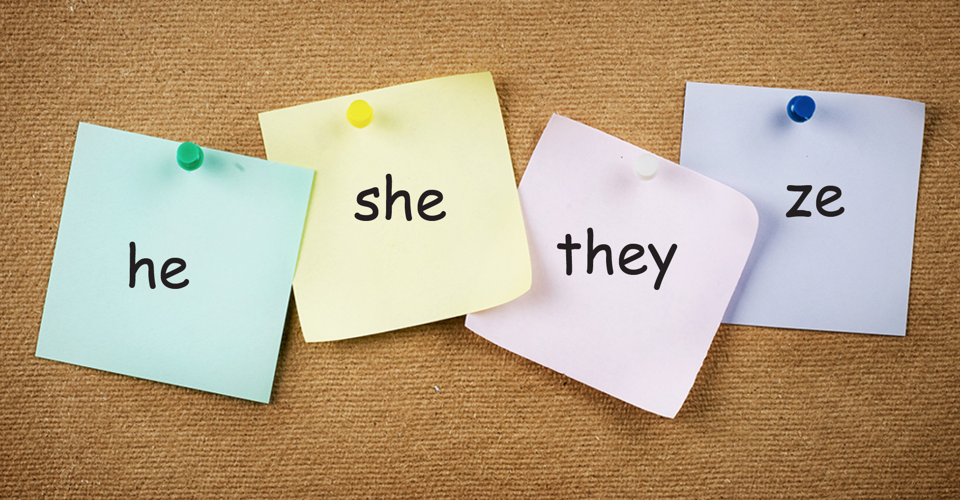 Pinboard with post-its reading he, she, they, ze