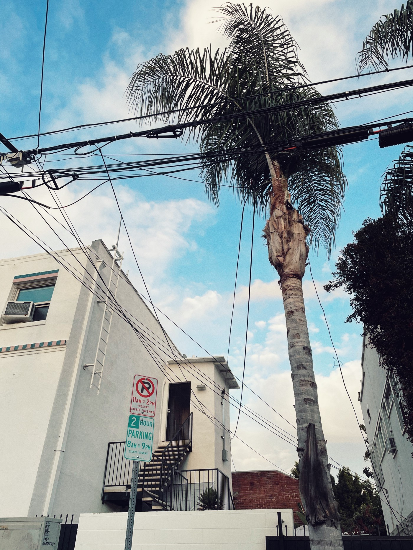 Electric wires, a palm tree, white walls and fire escape of a Los Angeles apartment building, a street parking sign shot against a blue sky with partial clouds.