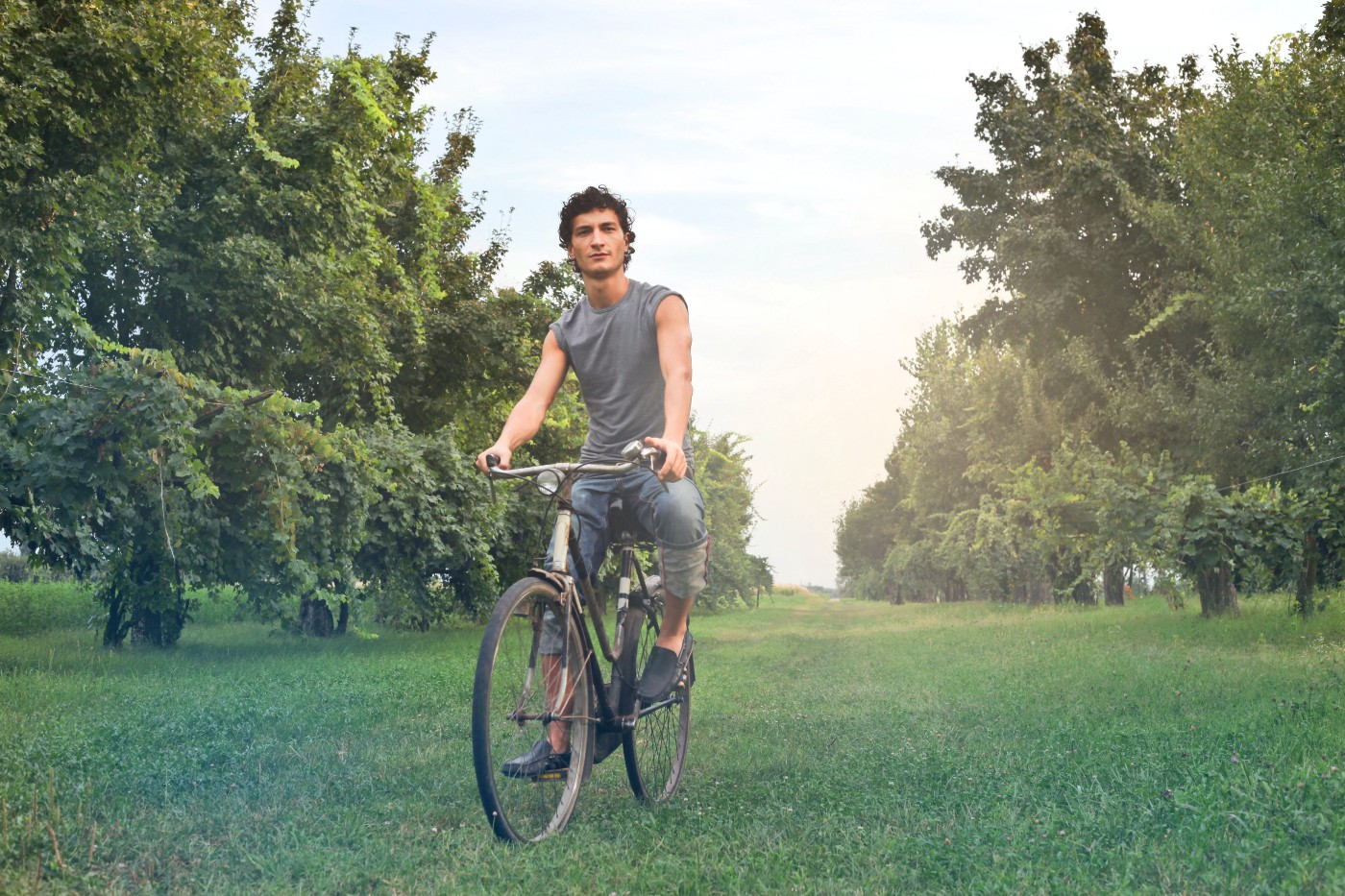 On a grassy path, a man rides his bicycle.